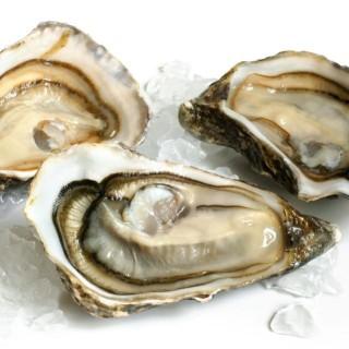 Le ostriche della Normandia